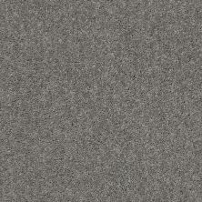 Shaw Floors Full Court 12′ Ink Spot 00501_52Y46