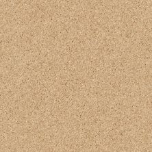 Shaw Floors Fielder's Choice 12′ Sun Beam 00240_52Y70