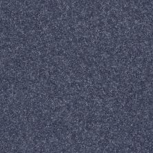Shaw Floors Fielder's Choice 12′ Charcoal 00545_52Y70