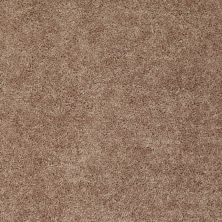 Shaw Floors Fielder's Choice 12′ Rio Grande 00701_52Y70