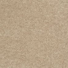 Shaw Floors Fielder's Choice 15′ Adobe 00103_52Y92