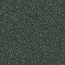 Shaw Floors Fielder's Choice 15′ Going Green 00340_52Y92