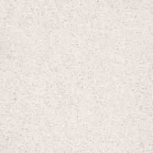 Shaw Floors Shaw Flooring Gallery Ellendale 15′ Halo 00100_5301G