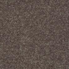 Shaw Floors Shaw Flooring Gallery Union City II 15′ Driftwood 00703_5304G