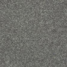 Shaw Floors Shaw Flooring Gallery Union City III 15′ Ink Spot 00501_5308G