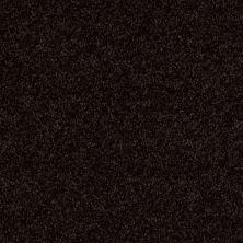 Shaw Floors Shaw Flooring Gallery Union City III 15′ Armour 00502_5308G