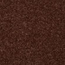 Shaw Floors Shaw Flooring Gallery Union City III 15′ Flower Pot 00610_5308G