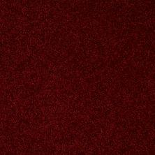 Shaw Floors Shaw Flooring Gallery Union City III 15′ Red Wine 00801_5308G