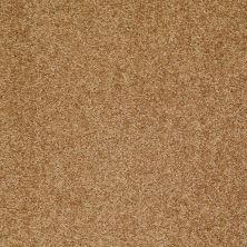 Shaw Floors Shaw Flooring Gallery All Out Deep Ochre 00200_5310G
