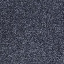 Shaw Floors Shaw Flooring Gallery All Out Nautical Blue 00401_5310G