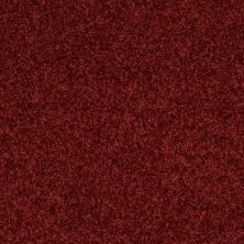 Shaw Floors Shaw Flooring Gallery All Out Tucson Red 00800_5310G