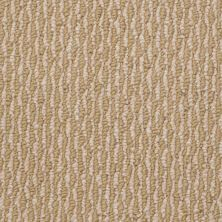 Shaw Floors SFA Silo 12′ Butterscotch 00200_53169