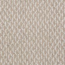 Shaw Floors Simpatico 12′ Tumbleweed 00102_53187