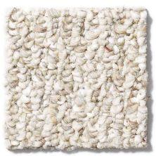 Shaw Floors Reggie Berber Jill's Jacks 12 Twigs 00701_53223
