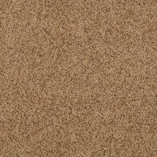 Shaw Floors Shaw Flooring Gallery Grand Image I English Toffee 00703_5349G
