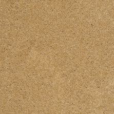Shaw Floors Shaw Flooring Gallery Grand Image II Sun Shower 00200_5350G