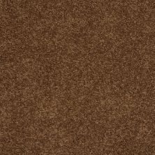 Shaw Floors Shaw Flooring Gallery Grand Image II Cabin 00726_5350G