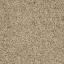 Shaw Floors Shaw Flooring Gallery Grand Image III Driftwood 00700_5351G