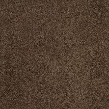 Shaw Floors Shaw Flooring Gallery Grand Image III Coffee Bean 00705_5351G
