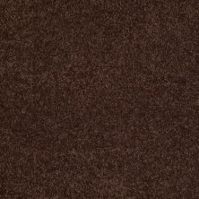 Shaw Floors Shaw Flooring Gallery Grand Image III Apple Butter 00728_5351G