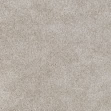 Shaw Floors Evertouch Pasadena Stone Dust 00102_53633