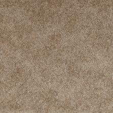 Shaw Floors Evertouch Pasadena Antique Wood 00107_53633