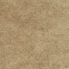 Shaw Floors Evertouch Pasadena Dried Leaf 00300_53633