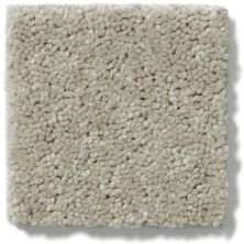 Shaw Floors Dyersburg II 12 Plaster 55752_53755
