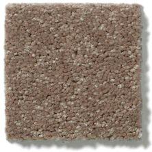 Shaw Floors Dyersburg II 12 Winter Wheat 55791_53755