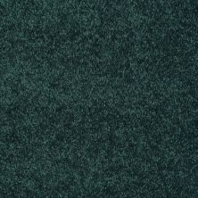 Shaw Floors Freelance 15′ Polo 55301_53856