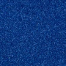 Shaw Floors Freelance 15′ Cobalt 55453_53856