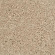 Shaw Floors SFA Mayville 12′ Adobe 00103_53A04
