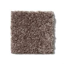 Shaw Floors SFA Mayville 12′ Molasses 00710_53A04