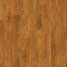 Philadelphia Commercial Resilient Commercial Bosk Antique Chestnut 00230_5401V