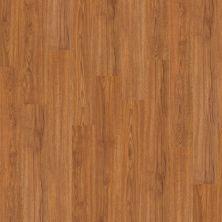 Philadelphia Commercial Resilient Commercial Bosk Mountain Oak 00260_5401V