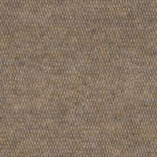 Philadelphia Commercial Veranda 12′ Uni Sand Dollar 63100_54163
