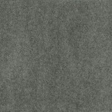 Philadelphia Commercial Alfresco 12′ Uni Silver Lining 68550_54168