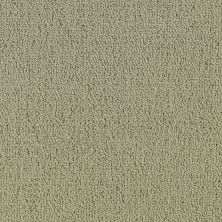 Philadelphia Commercial Color Accents Light Taupe 62104_54462