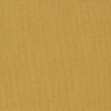 Philadelphia Commercial Color Accents Ochre 62210_54462