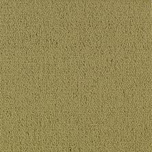 Philadelphia Commercial Color Accents Herbal 62302_54462