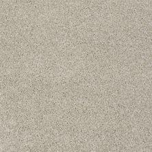 Anderson Tuftex Creative Elegance (floors To Go) Barney Euro Linen 00110_544AF
