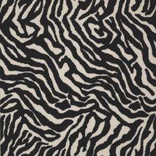 Philadelphia Commercial Call Of The Wild Zebra Migrant Beauty 05510_54505
