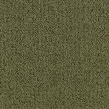 Philadelphia Commercial Color Accents Bl Ivy 62335_54584