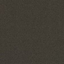Philadelphia Commercial Color Accents Bl Ebony 62500_54584