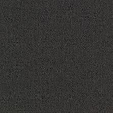 Philadelphia Commercial Color Accents Bl Black 62505_54584