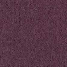 Philadelphia Commercial Color Accents Bl Purple Heart 62979_54584
