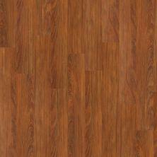 Philadelphia Commercial Vinyl Commercial Wood Mix Sassafras 00681_5459V