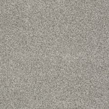 Anderson Tuftex Creative Elegance (floors To Go) Hartley Stone Path 00113_545AF