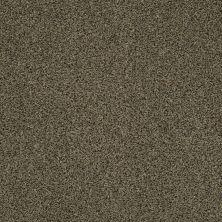 Anderson Tuftex Creative Elegance (floors To Go) Hartley Glorious 00712_545AF