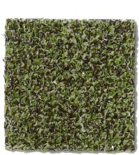 Philadelphia Commercial Arbor View (t) Mossy Bark 00310_54625